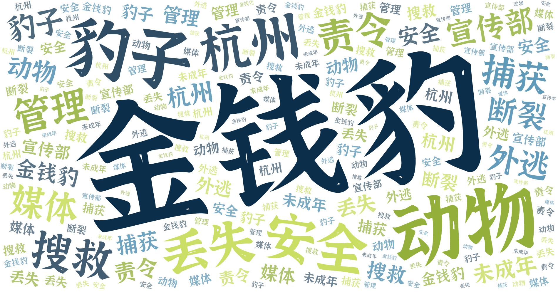 词云图,文字云图,金钱豹 豹子 动物 安全 杭州 丢失 责令 搜救 管理 宣传部